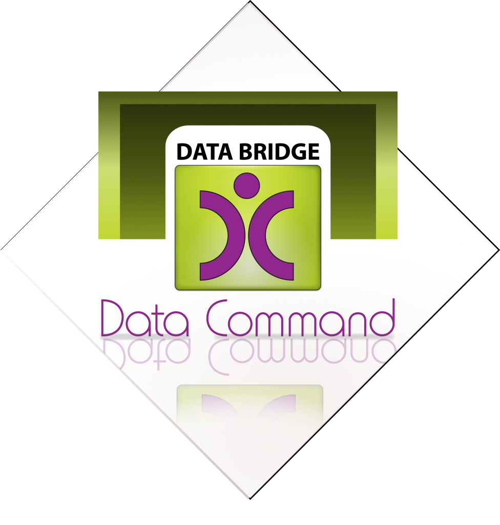 Data Command Logo with Data Bridge