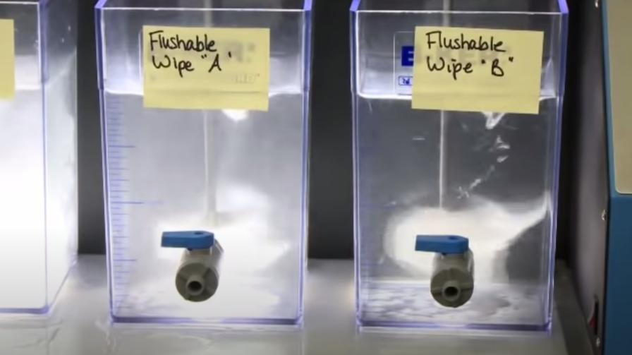 flush lab simulation screenshot